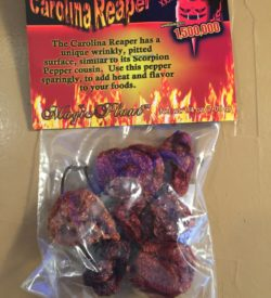 Scorched Lizard Carolina Reaper P{ods
